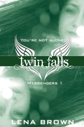 My YA paranormal, TWIN FALLS, came out this summer.