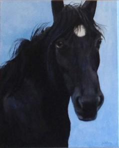 Jan Horse